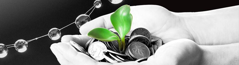 ビヨンドスタンダードはVC型ヘッジファンドとマーケティング専門のコンサルティング会社です。